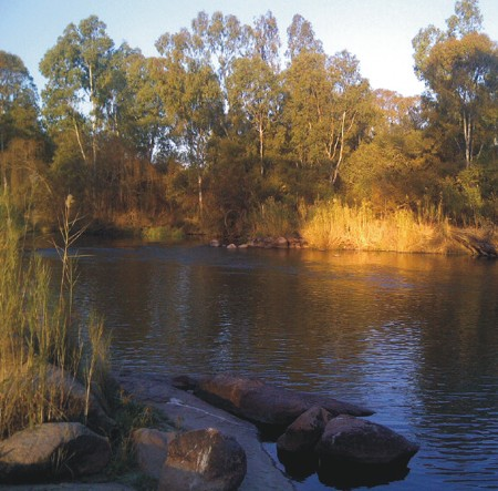 vaal river in midwinter otters haunt parys