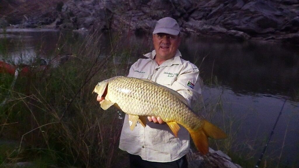 ORJ big yellowfish in gorge